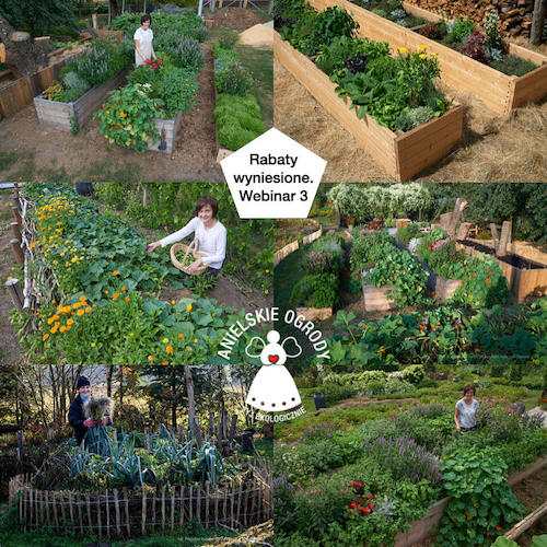 szkolenie na żywo anielskie ogrody